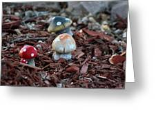 Cluster Of Toadstools  In Fairy Garden Greeting Card