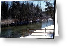 Cut River In Winter With Ducks Greeting Card
