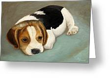 Cute Beagle Greeting Card by Angeles M Pomata