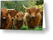 Cute Fluffy Cows Greeting Card