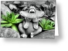 Cute Garden Frog And Succulents Greeting Card