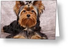 Cute Puppy Greeting Card by Konstantin Gushcha