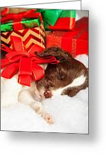 Cute Puppy With Red Bow Sleeping By Gifts Greeting Card