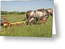 Cutting Hay Greeting Card