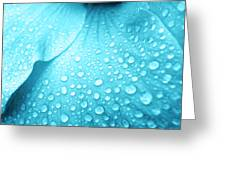 Aqua Droplets Greeting Card