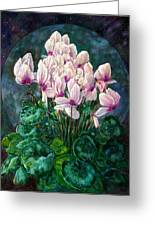 Cyclamen In Orbit Greeting Card