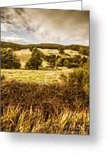 Cygnet Rustic Farming Fields Greeting Card