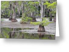 Cypress And Spanish Moss Of Caddo Lake State Park 4 Greeting Card