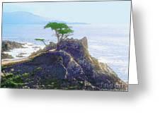 Cypress At Carmel Greeting Card