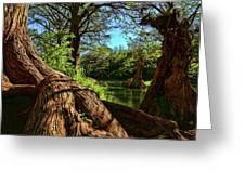 Cypress Bend Park In New Braunfels Greeting Card