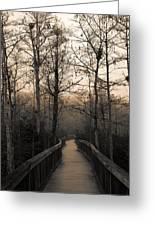 Cypress Boardwalk Greeting Card