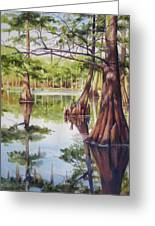 Cypress In Lake Chicot Greeting Card