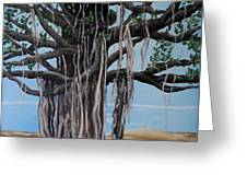 Cypress On The Shore  Greeting Card