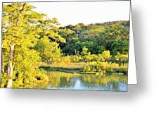 Cypress Trees Along The Guadalupe Greeting Card