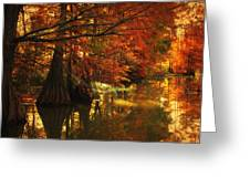 Cypress Trees In The Misy Morning Greeting Card