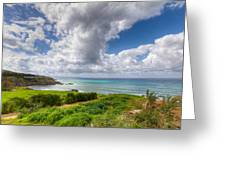 Cyprus Spring Seascape And Landscape Greeting Card