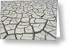D17845-dried Mud Patterns  Greeting Card