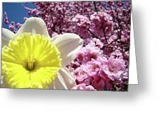 Daffodil Flower Art Prints Pink Tree Blossoms Blue Sky Baslee Greeting Card