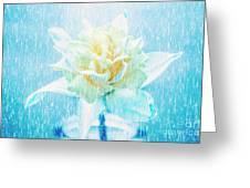 Daffodil Flower In Rain. Digital Art Greeting Card