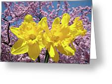 Daffodil Flowers Spring Pink Tree Blossoms Art Prints Baslee Troutman Greeting Card