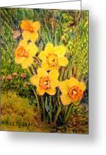 Daffodil Quintet Greeting Card