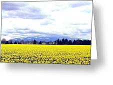 Daffodils By The Million Greeting Card
