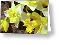 Daffodils Flower Bouquet Rustic Rock Art Daffodil Flowers Artwork Spring Floral Art Greeting Card