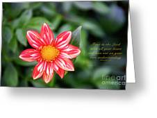 Dahlia And Proverbs Verse Greeting Card