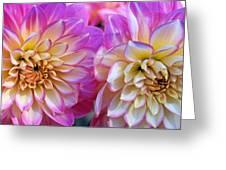 Dahlia Cousins Greeting Card