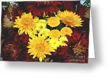 Dahlia Display Greeting Card