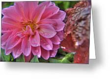 Dahlia Emmily Greeting Card