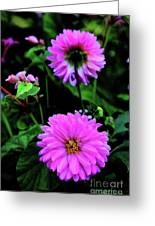 Dahlia Mirror Greeting Card