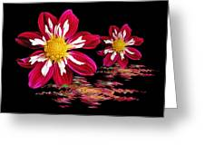Dahlia Reflections Greeting Card