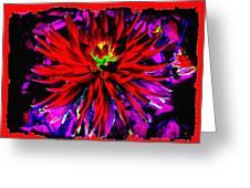 Dahlia Rouge Texture Avec La Frontiere  Greeting Card
