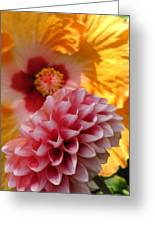 Dahlia With Hibiscus Greeting Card