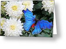 Dahlias And The Butterfly Greeting Card