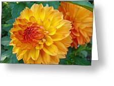 Dahlias Art Prints Orange Dahlia Flowers Baslee Troutman Greeting Card