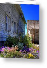 Dahmen Barn Flowers Greeting Card