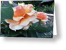 Daily Dose Of Beauty Greeting Card