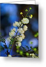 Dainty Wildflowers On Blue Bokeh By Kaye Menner Greeting Card