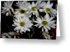 Daisies 1 Greeting Card