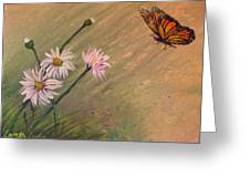 Daisies And Butterfly Greeting Card