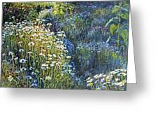 Daisies And Shades Of Blue Greeting Card by Steve Spencer