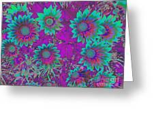 Pop Art Daisies Aqua Greeting Card
