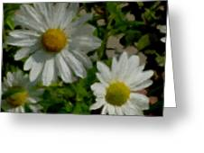 Daisies By The Number Greeting Card