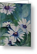 Daisies In The Blue Greeting Card