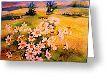Daisies In The Sun Greeting Card