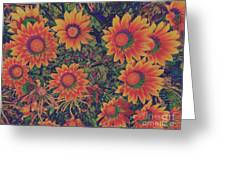 Pop Art Daisies Orange Greeting Card