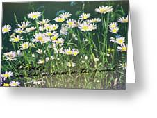 Daisies Quote Greeting Card