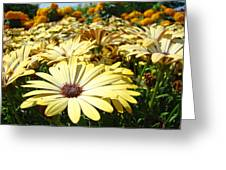 Daisies Yellow Daisy Flowers Garden Art Prints Baslee Troutman Greeting Card
